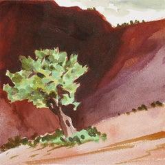 Tree in Abiquiu