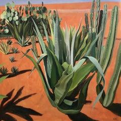 Elaine Kazimierczuk, Cacti with Shadows, Musee de la Palmeraie, Morocco