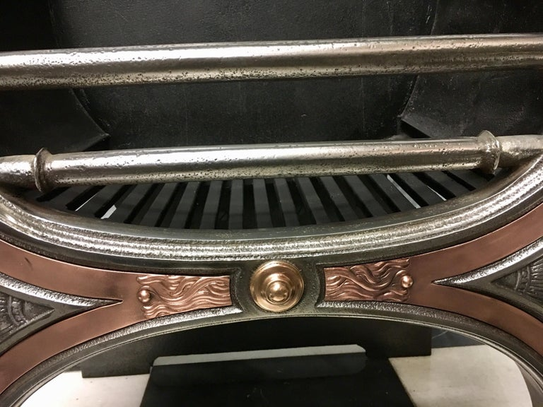 Elegant 19th Century Regency Polished Cast Iron and Bronze Fire Grate For Sale 2