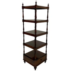 Elegant English Regency Style Rosewood Etagere Bookshelf Shelves