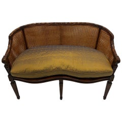 Elegant Hand Carved Mahogany & Caned Settee Loveseat with Silk Cushion