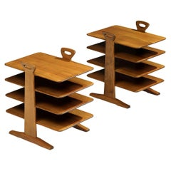 Elegant Magazine Stand in Walnut