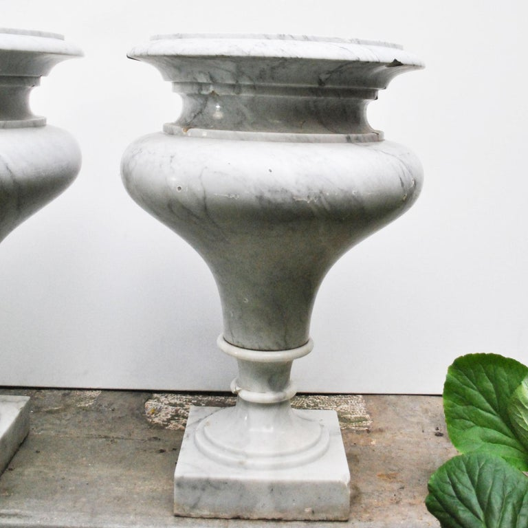 Elegant Pair of Large Carrara Marble Vases, Period Early 20th Century For Sale 5