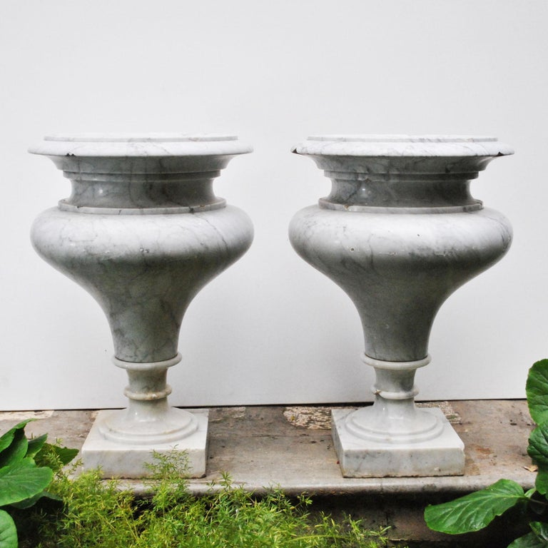 Elegant Pair of Large Carrara Marble Vases, Period Early 20th Century In Distressed Condition For Sale In bari, IT