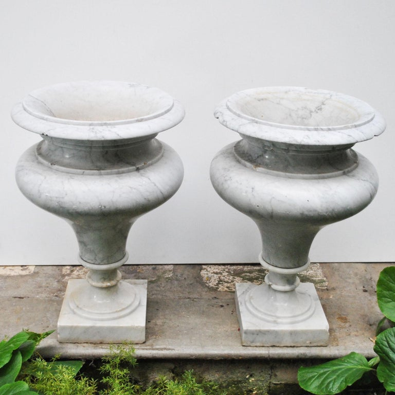 Elegant Pair of Large Carrara Marble Vases, Period Early 20th Century For Sale 1