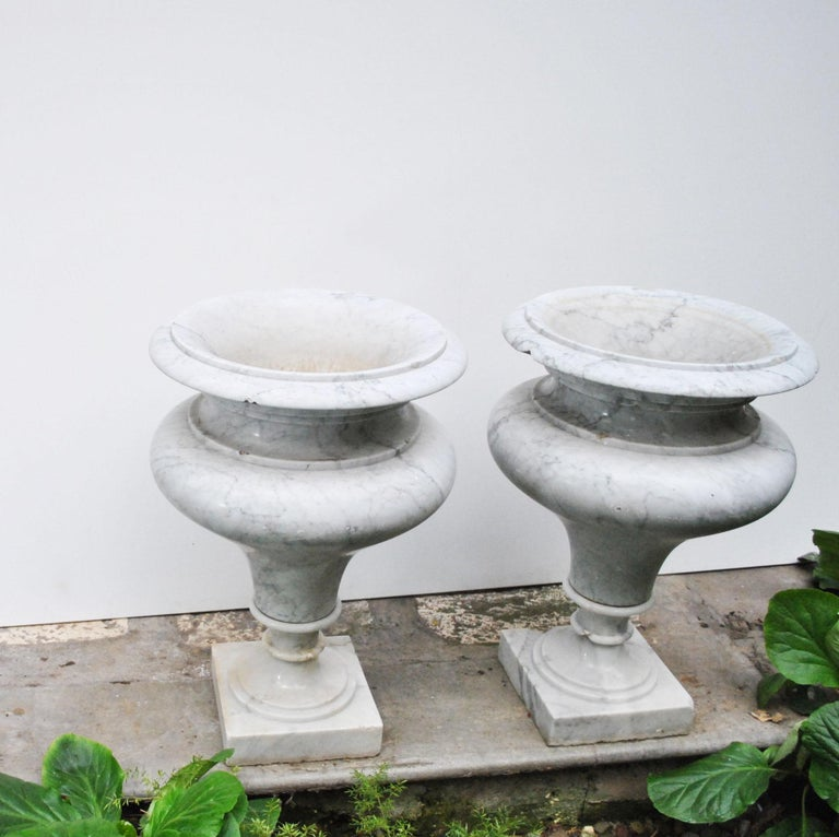 Elegant Pair of Large Carrara Marble Vases, Period Early 20th Century For Sale 3