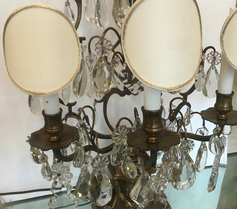 Early 20th Century Elegant Pair of Large French Bronze and Crystal Girandoles For Sale