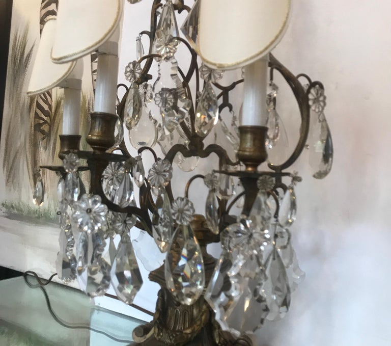 Elegant Pair of Large French Bronze and Crystal Girandoles For Sale 1