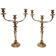 Elegant Pair of Old Sheffield Plate Candelabra, circa 1830