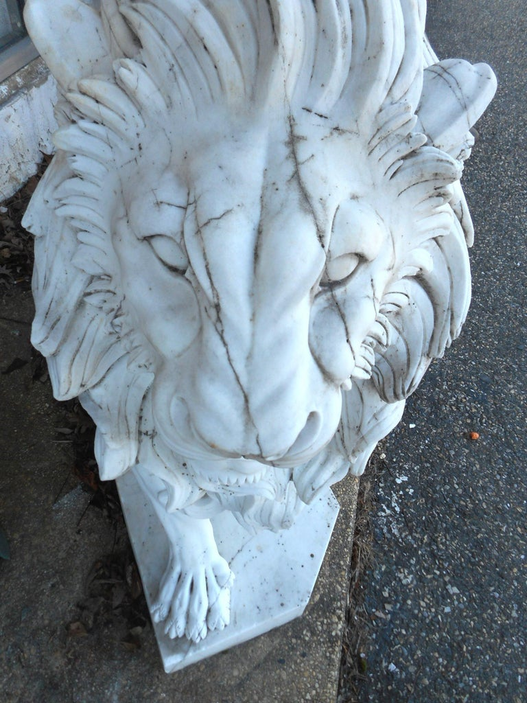 Elegant Pair of White Marble Lion Statues For Sale 6