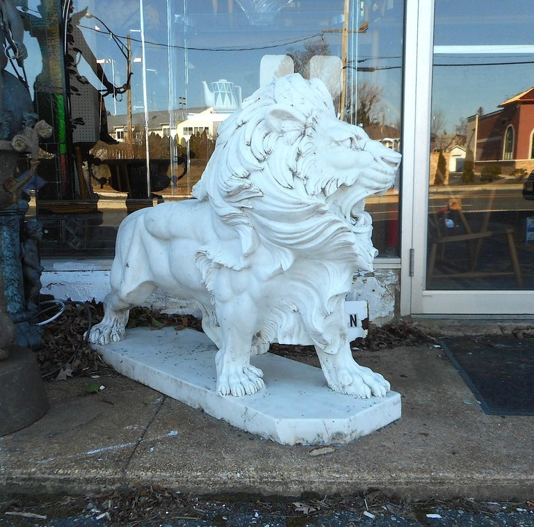 This stunning pair of lion statues are made of solid white marble. These majestic garden ornaments sit on thick marble slabs and feature plenty of hand carved detail. A fierce pose with its mouth wide open and a flowing mane shows tons of