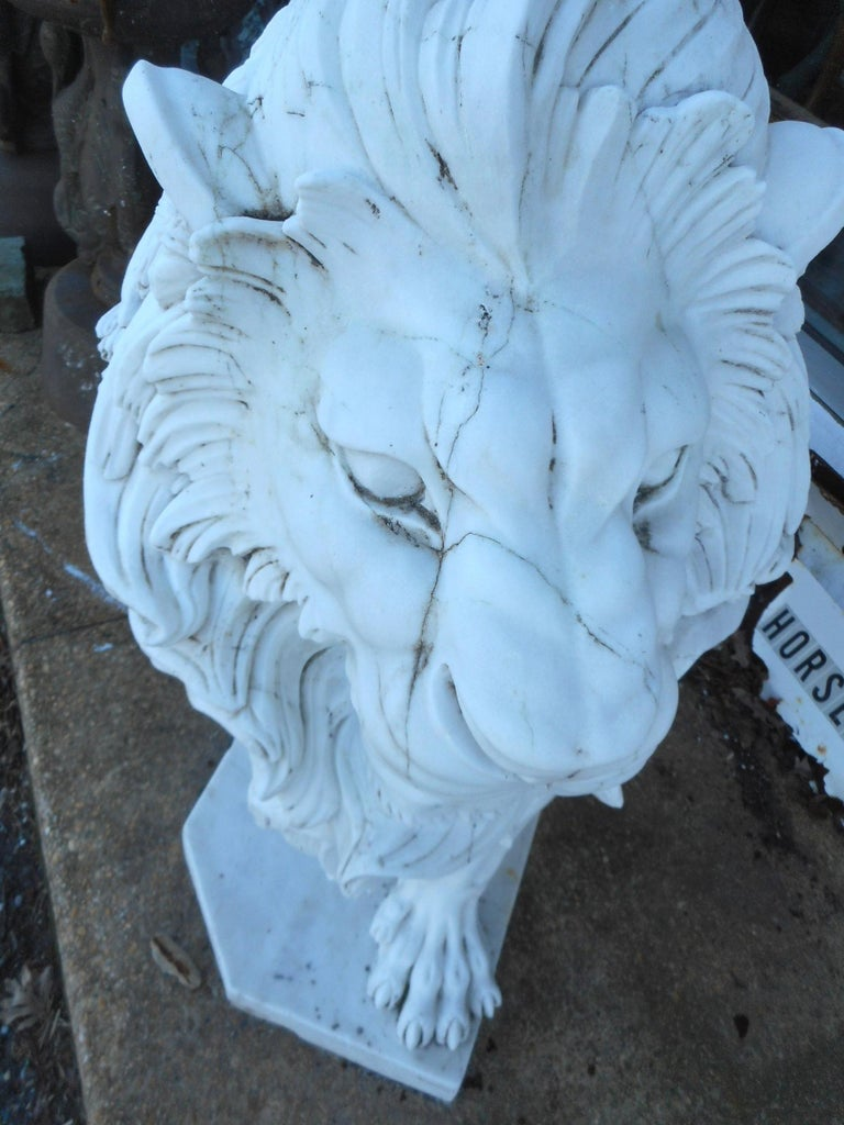 Elegant Pair of White Marble Lion Statues For Sale 1