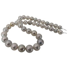 Elegante Silver Natural Color South Sea Pearls with High Luster and Orient