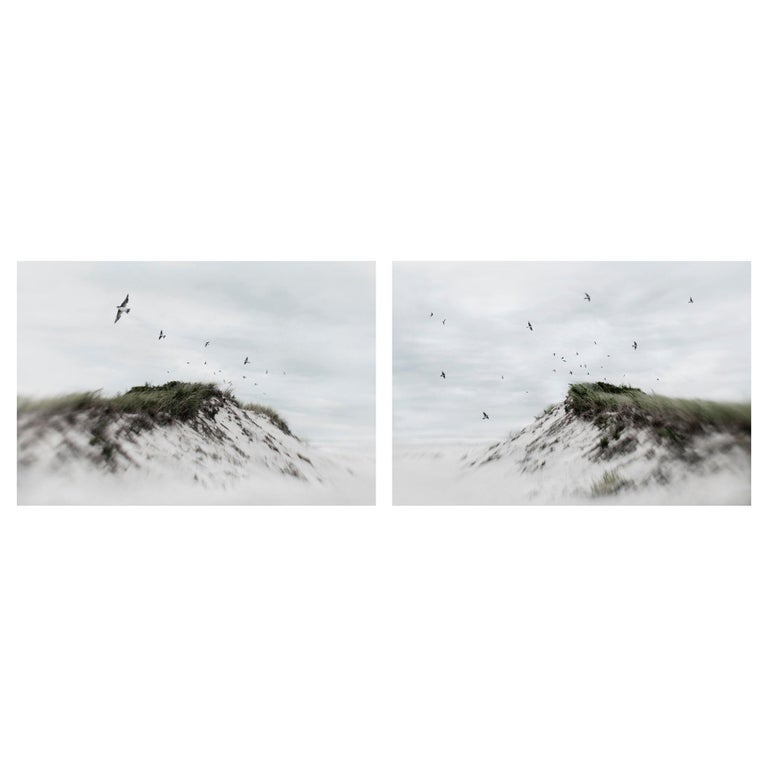 Elena Lyakir Diptych, Indian Summer and Learning To Dream Photographs, 2017 For Sale