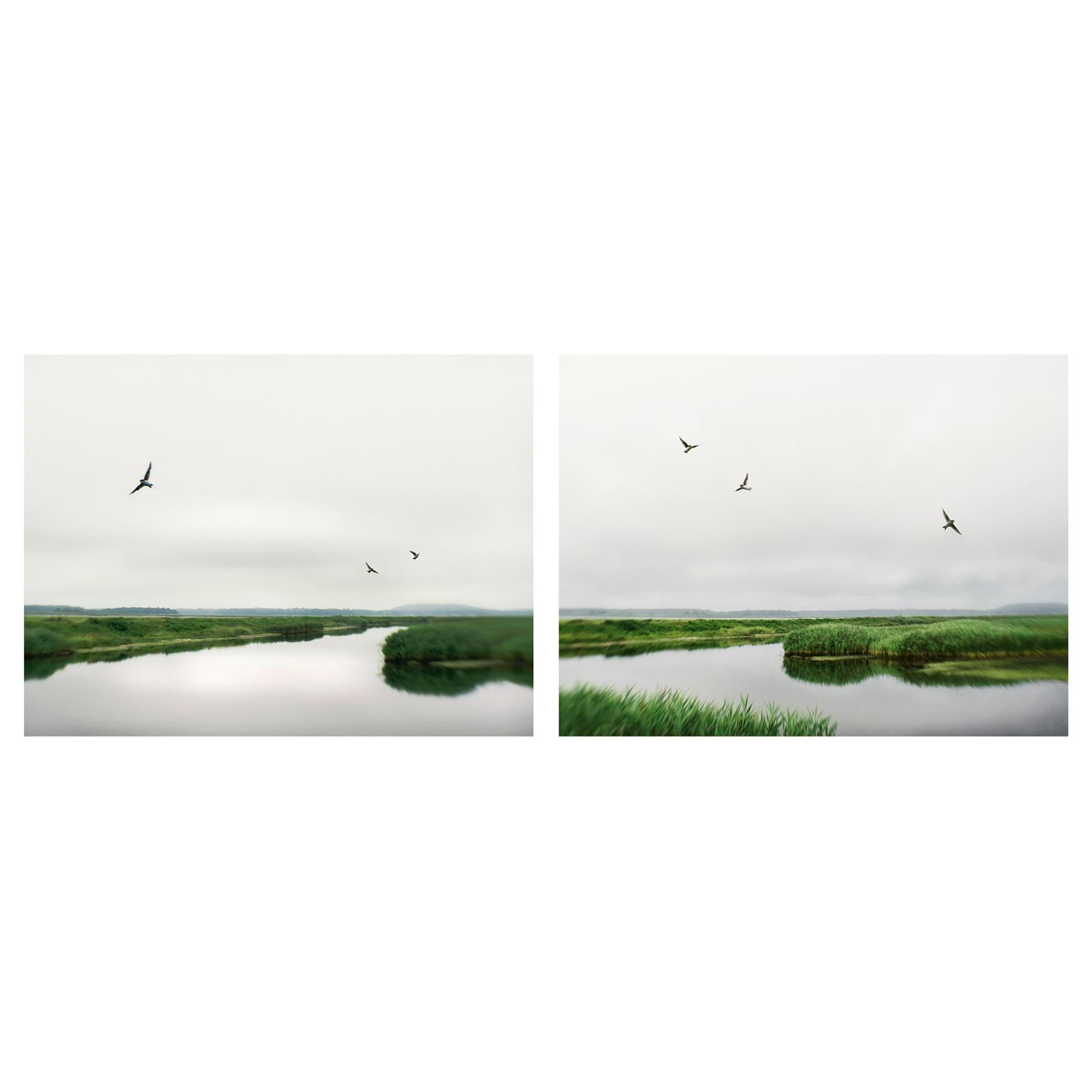 Elena Lyakir Diptych, When We Were Three and The Inevitable Photographs, 2019
