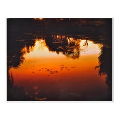 Nocturnes à Giverny, C-Print, Contemporary Photography, 21st Century