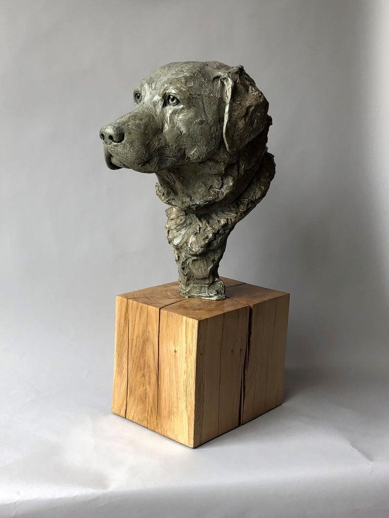 Derby Bronze  For Sale 1