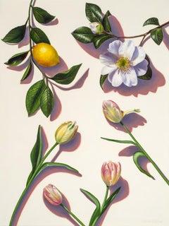 Beauty Above Me, Beauty Below Me / garden portrait lemon & magnolia
