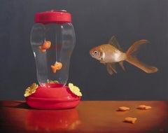 Feeder Fish