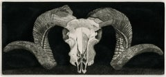 Elizabeth Quandt 'Aries I' Limited Edition, Signed Etching of Ram's Head