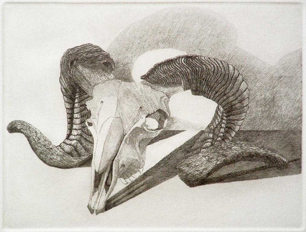 Elizabeth Quandt 'Aries II' Limited Edition, Signed Etching of Ram's Head