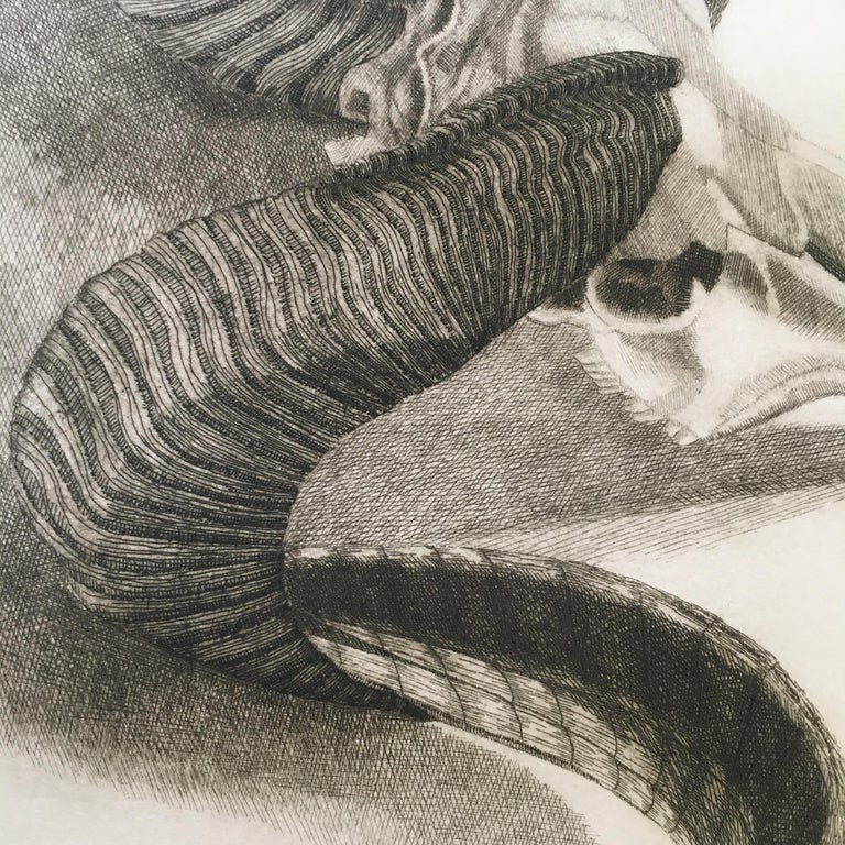 Elizabeth Quandt 'Aries III' Limited Edition, Signed Etching of Ram's Head - Contemporary Print by Elizabeth Quandt