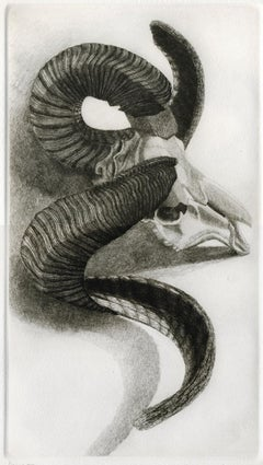 Elizabeth Quandt 'Aries III' Limited Edition, Signed Etching of Ram's Head