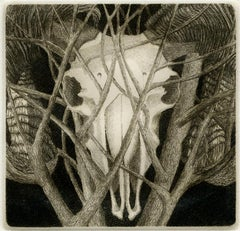 Elizabeth Quandt 'Aries IV' Limited Edition, Signed Etching of Ram's Head