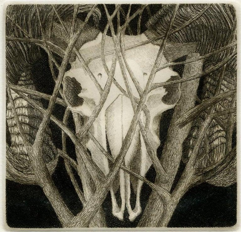 Elizabeth Quandt 'Aries IV' Limited Edition, Signed Etching of Ram's Head - Print by Elizabeth Quandt