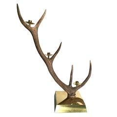 Elk Horn Three-Light Candleholder, Italy
