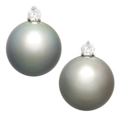 Ella Gafter Black Tahitian Pearl Stud Earrings