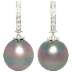 Ella Gafter 13.5mm Black Tahitian Pearl Diamond Earrings
