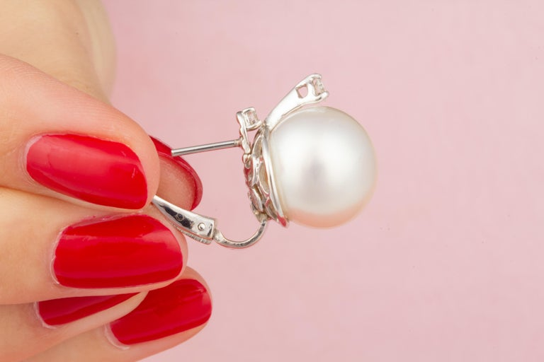 Ella Gafter White South Sea Pearl Stud Earrings For Sale 2