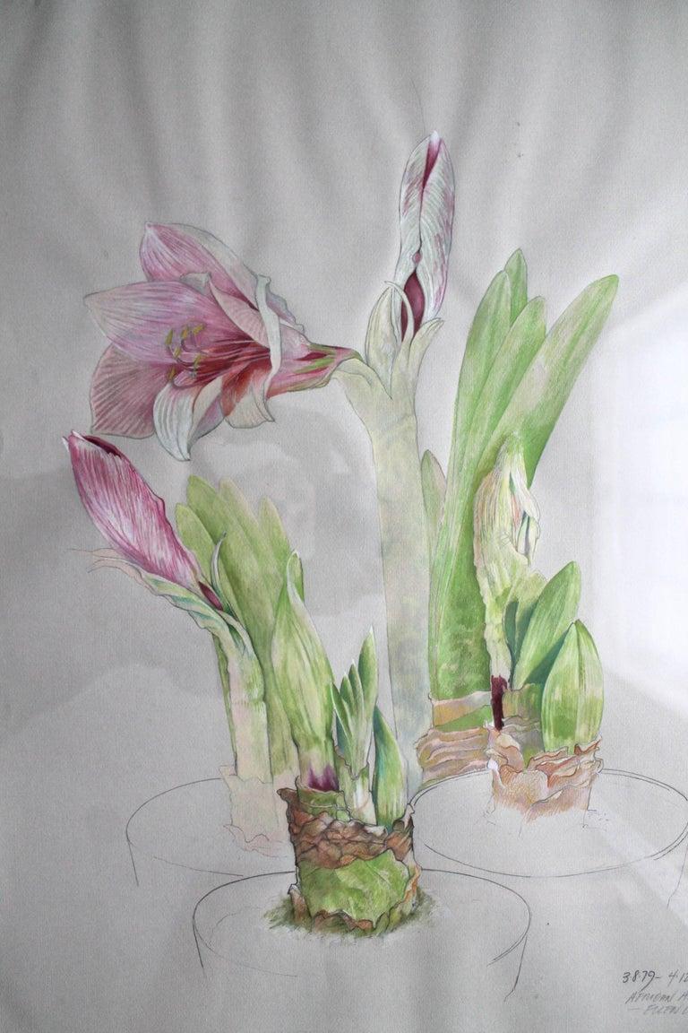 Modern Ellen Lanyon Watercolor