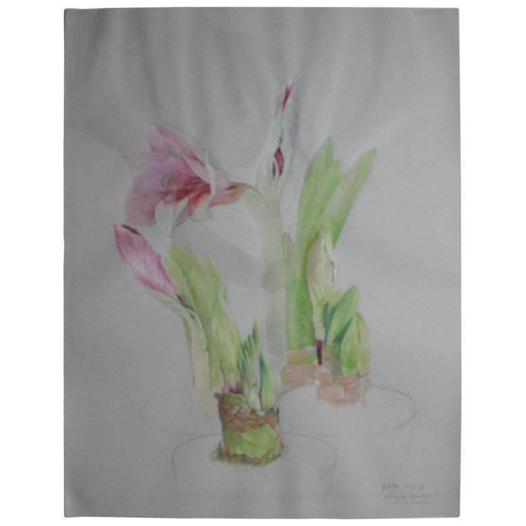 "Ellen Lanyon Watercolor ""Amaryllis"" Richard Gray Gallery Label, 1978 For Sale"