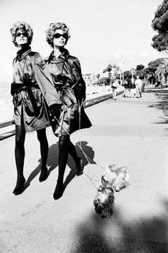 Dog Walkers, Cannes