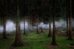 Between the Trees 2 - Smoke, Misty forest, Woodland photography, Ellie Davies