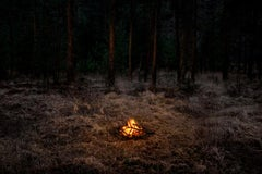 Fires 1 - Woodland imagery, Ellie Davies, Contemporary photography, Forest