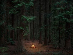 Fires 10 - Ellie Davies, Forests, Nighttime, Fires, Landscapes, Mystery