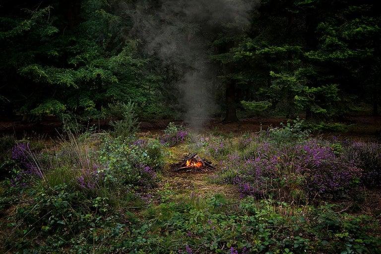 Fires 3 - Ellie Davies, Contemporary print, Forest imagery, Woodland, Photograph - Black Landscape Photograph by Ellie Davies