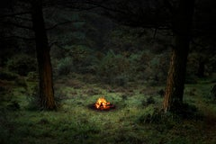 Fires 4 - Ellie Davies, Contemporary photography, Forest imagery, Burning