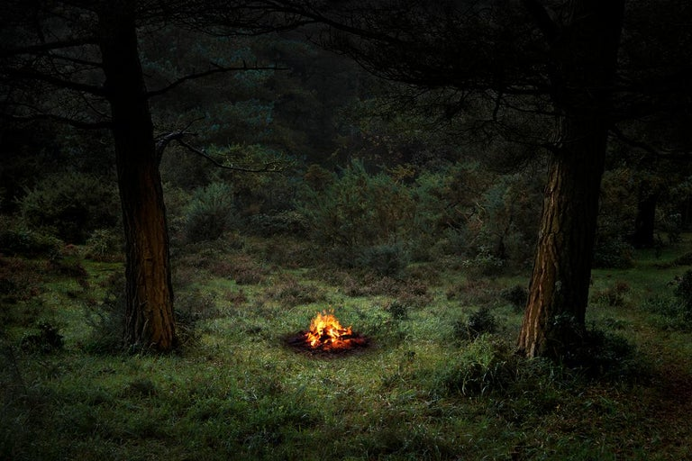 Fires 4 - Ellie Davies, Contemporary photography, Forest imagery, Burning - Photograph by Ellie Davies