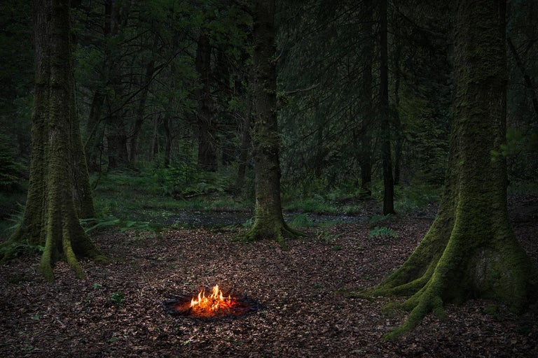 Fires 5 - Ellie Davies, British Art, Photography, Landscape, Nature, Fire, Trees - Black Landscape Photograph by Ellie Davies
