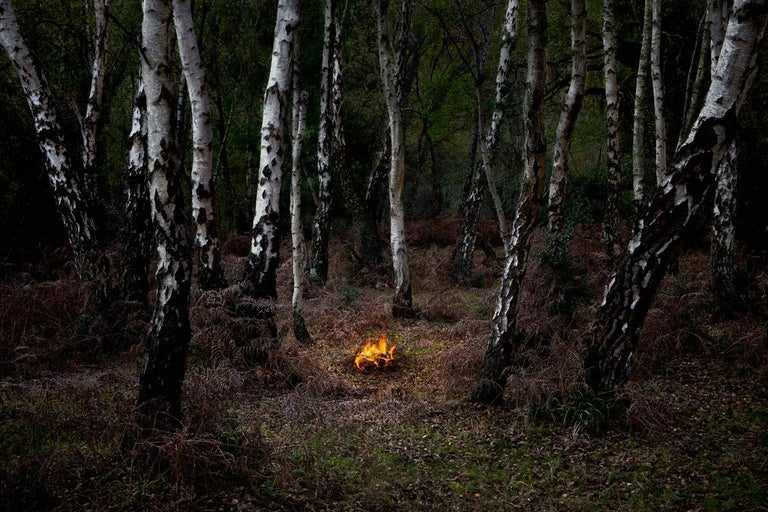 Fires 6 - Ellie Davies, Conceptual photography, Forest imagery, Woodland, Nature - Photograph by Ellie Davies