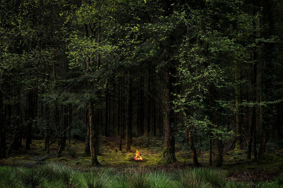 Fires 8 - Ellie Davies, Conceptual photography, Fires, Woodland, Landscape