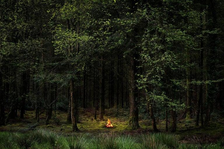 Fires 8 - Ellie Davies, Conceptual photography, Fires, Woodland, Landscape - Photograph by Ellie Davies