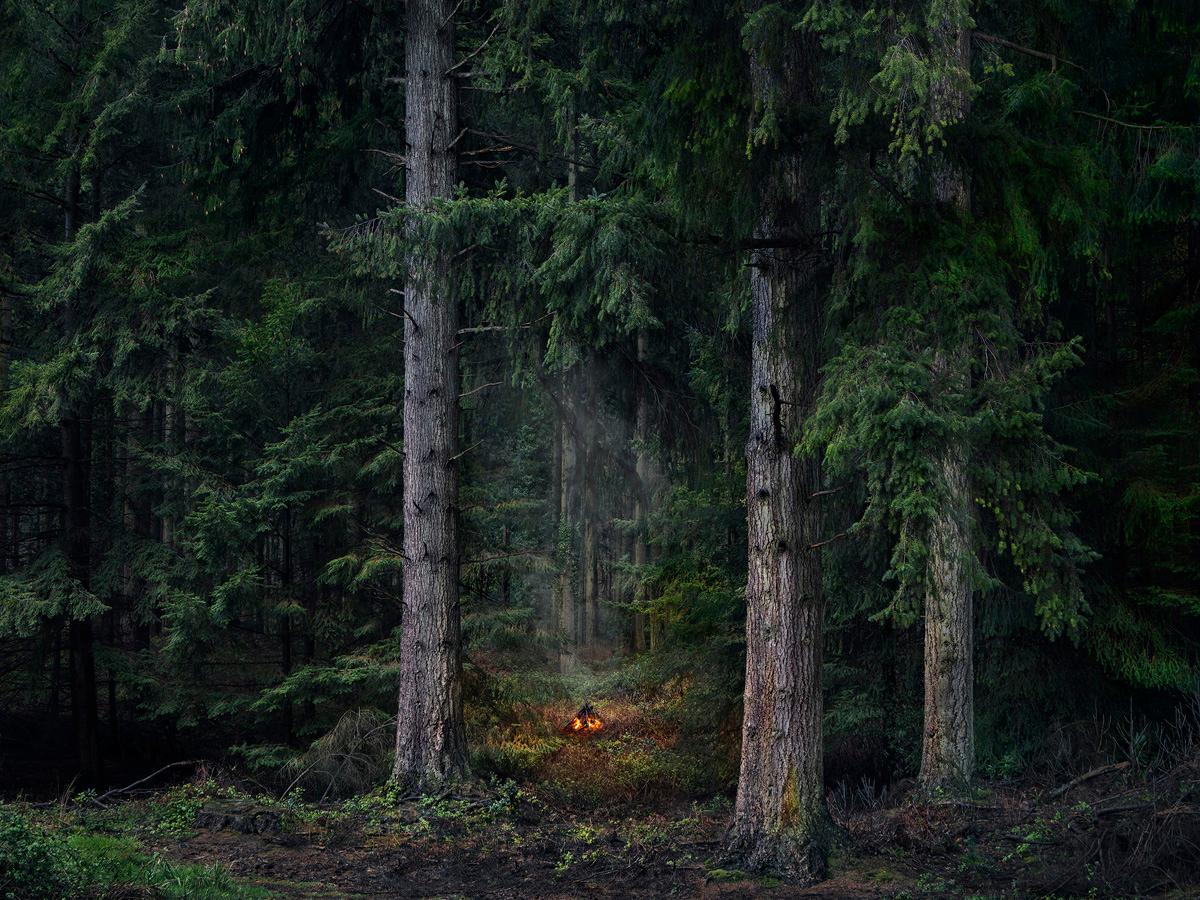 Fires 9 - Ellie Davies, Photography, Fire, Landscape imagery, Forests, Campsites