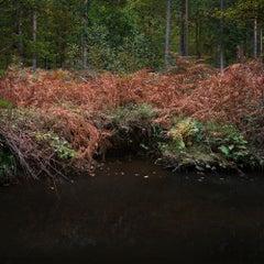 Half Light 7 - British landscape, Nature, Photography, Color print