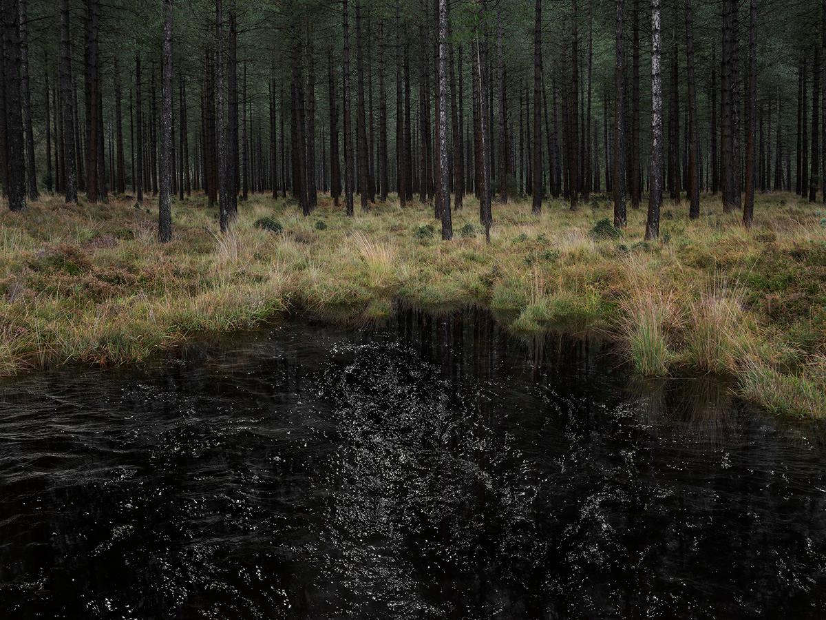 Seascapes 3 - Ellie Davies, Contemporary, Photography, British Art, Landscapes