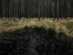 Seascapes 3 - Ellie Davies, Contemporary Photography, British Art, Landscapes